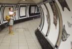gatos-metro