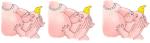 Bimbo-che-allatta-multiplo