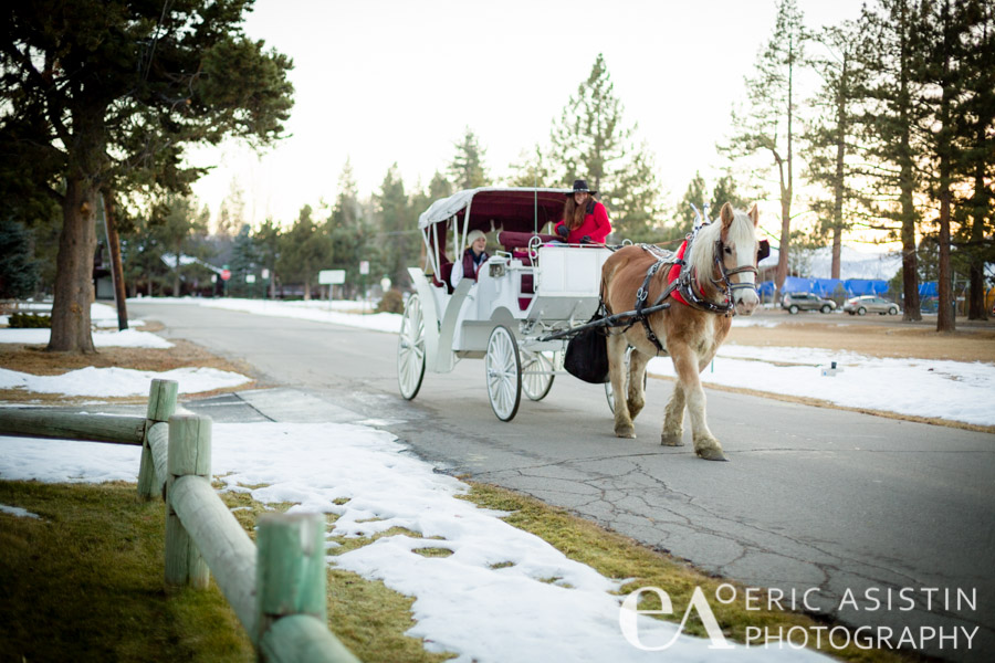 Borges Family Horse carriage rides. South Lake Tahoe CA