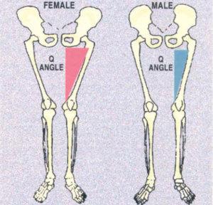 q-angle-female-male