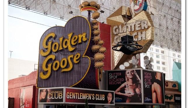Golden Goose 9x9