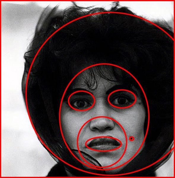 round-face-circle-arbus
