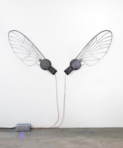 © Eric Le Maire, Les ailes de mouche, son, vibration (photo © Cécil Mathieu)