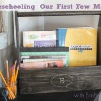 Homeschooling: Our first two months
