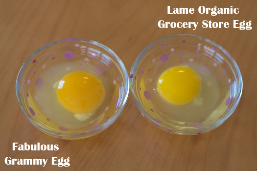 Organic Grudge Match
