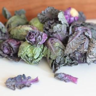 Taste Test: Kale Sprouts