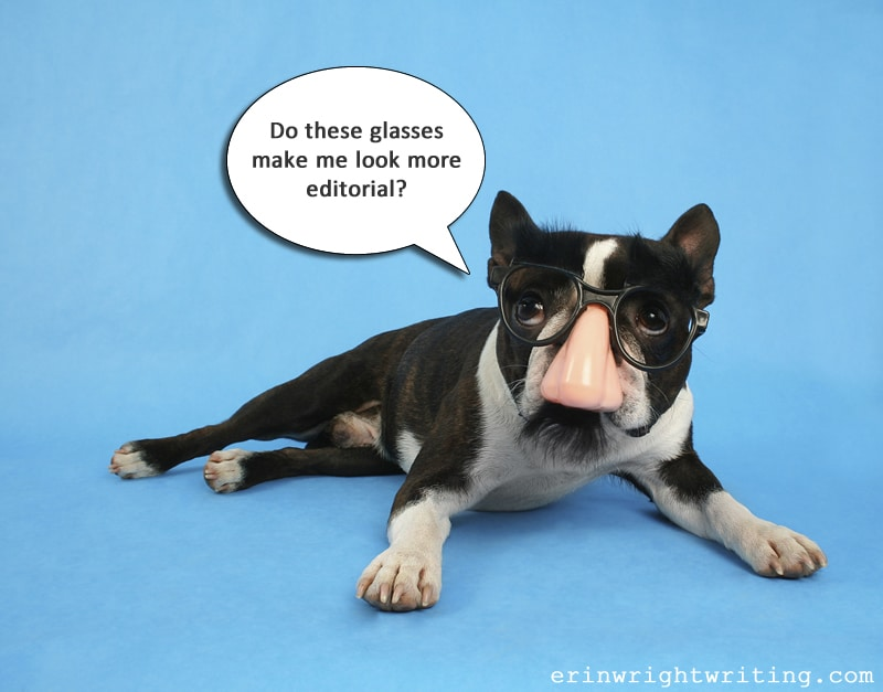 Dog in Fake Nose and Glasses