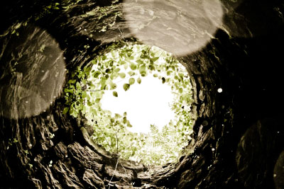 View from inside a well