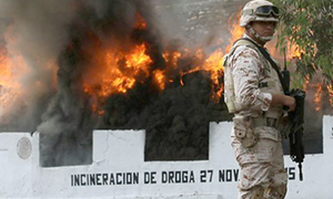 Destrucción de drogas incautadas en México. Foto de Animal Político/Cuartoscuro