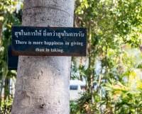 Chiang Mai-1120