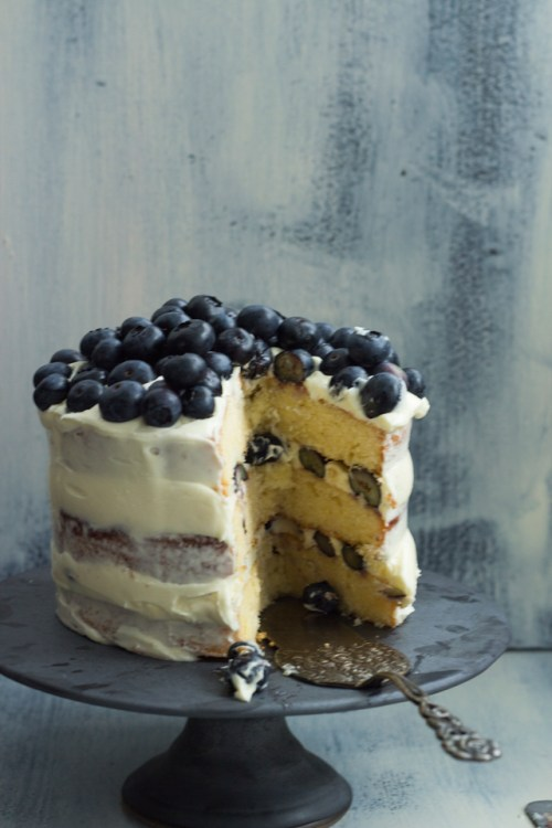 Heidelbeer-Schoko-Torte-36-140706-6