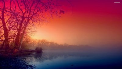 Beautiful Fog wallpaper | 2560x1440 | #29325