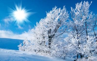 Winter HD wallpaper | 2560x1600 | #32518