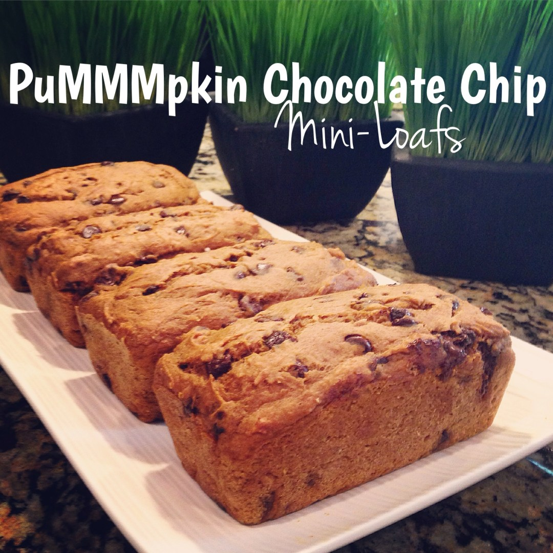 PuMMMpkin Chocolate Chip Mini-Loafs