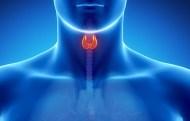 Hormônios triiodotironina e tiroxina