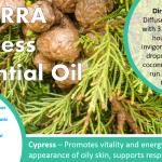 doterra cypress essential oil