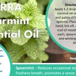 doterra spearmint essential oil