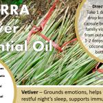 doterra vetiver essential oil