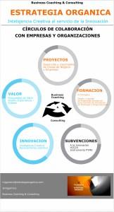 ESTRATEGIA ORGÁNICA_Círculos de Colaboración con Empresas y Organizaciones