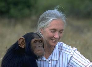 Emakumeen Historia: Jane Goodall @ Portalean (ikastaro gelan)