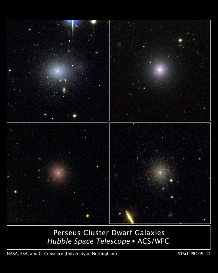 hubble-perseus-cluster-dwarf-galaxies