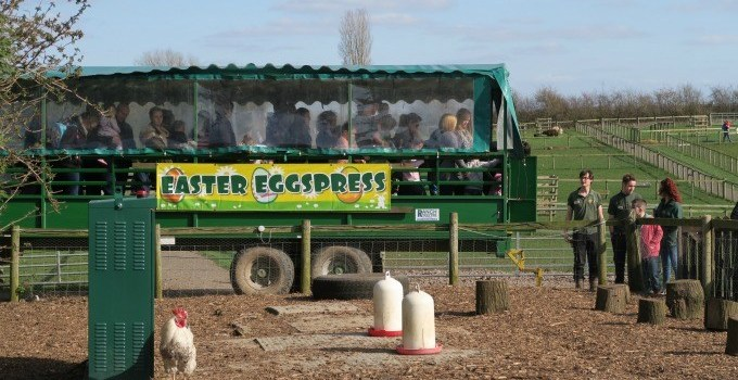 Easter Eggstravaganza at National Forest Adventure Farm