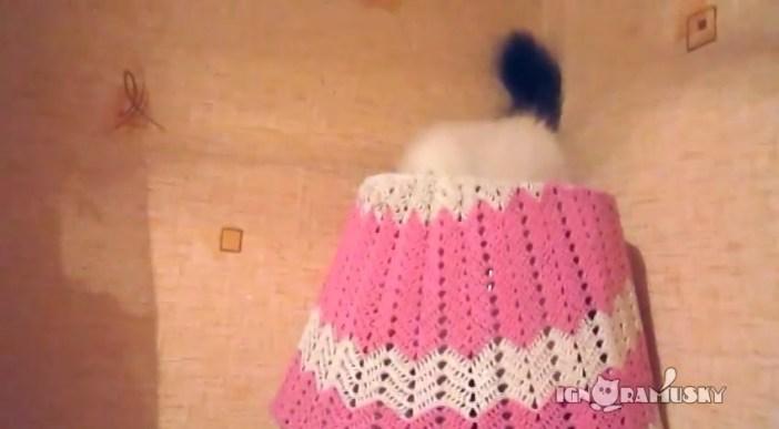 ネコのかくれんぼ シッポ