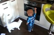 男の子を注意する猫