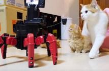 ロボットと猫の友情