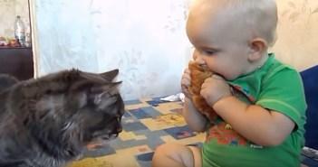パンを分け合う猫と赤ちゃん
