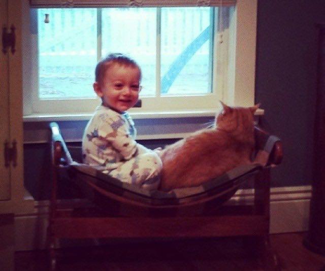 猫とくつろぐ男の子
