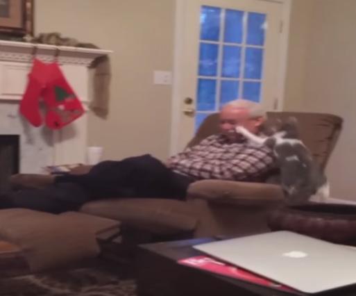 おじいちゃんに猫パンチ!