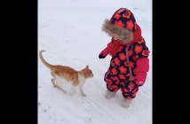 猫と女の子のお散歩