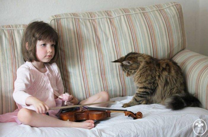幸せな時間を過ごす猫と少女