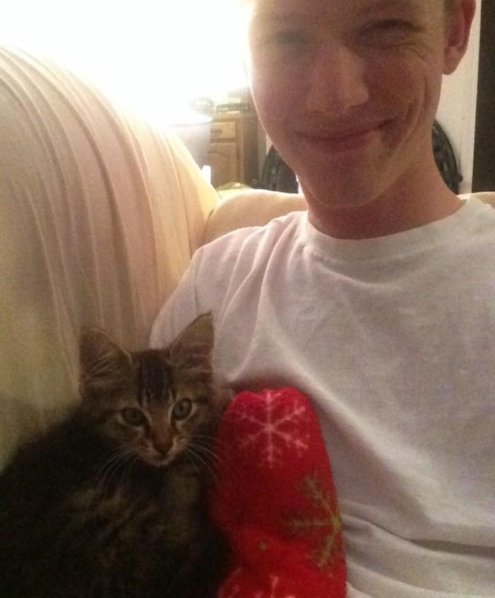 飼い主さんと子猫