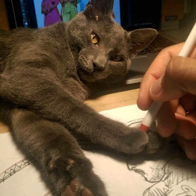 絵を描く猫