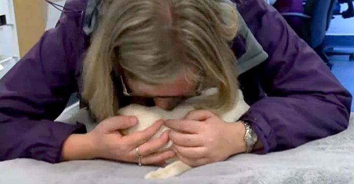 猫を抱きしめる飼い主さん