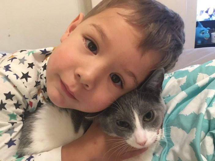 元気な男の子と子猫