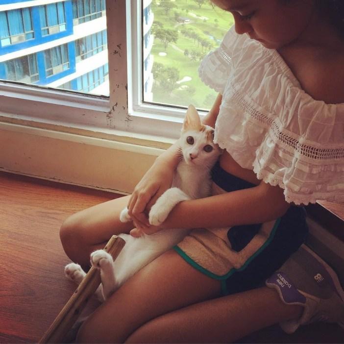 女の子と一緒の子猫