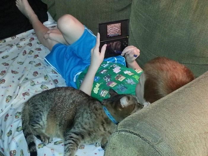 いつもいっしょの男の子と猫