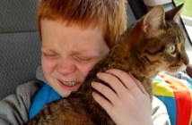 猫と再会した男の子