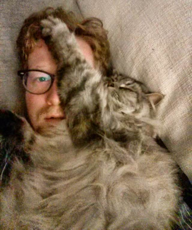 顔に被さる猫