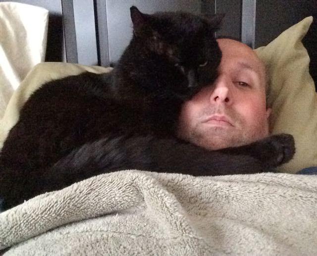 顔にくっつく黒猫