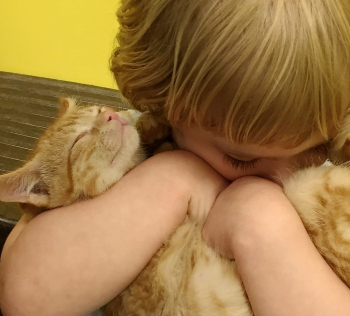 子猫をギュッとする女の子