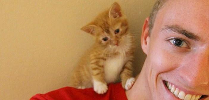 肩に乗る子猫