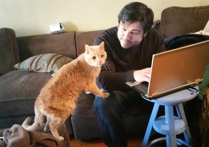 膝に手をつく猫
