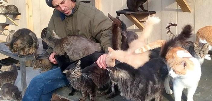 300匹の猫とともに暮らす男性