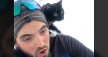 ソリを楽しむ猫と男性