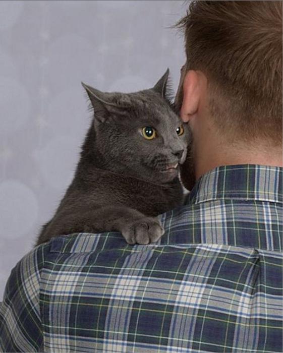抱きつく猫