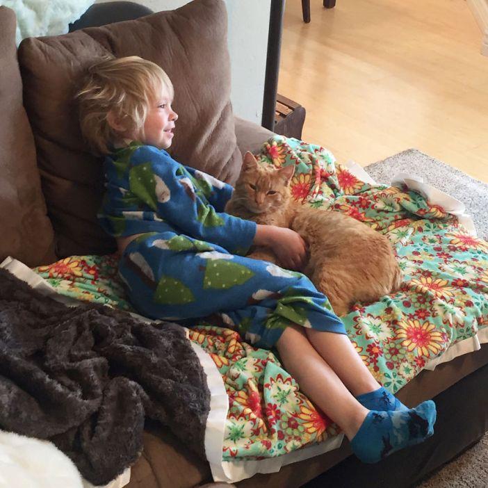 男の子と一緒の猫